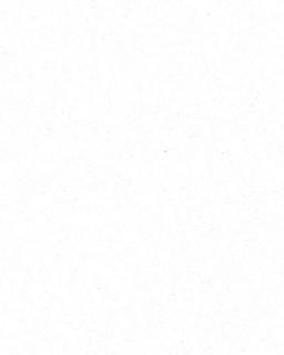 Bianco Assoluto Unistone