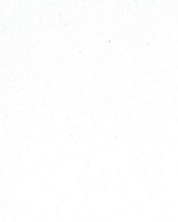 Bianco Extreme Unistone